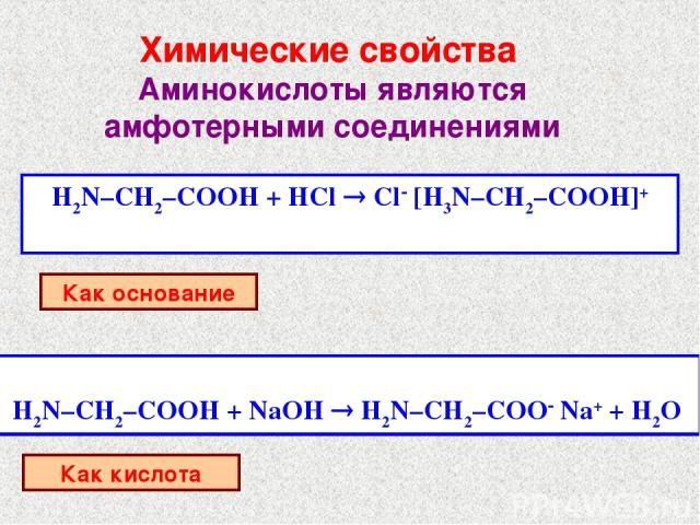Химические свойства Аминокислоты являются амфотерными соединениями H2N–CH2–COOH + HCl ® Cl- [H3N–CH2–COOH]+ Как основание H2N–CH2–COOH + NaOH ® H2N–CH2–COO- Na+ + H2O Как кислота