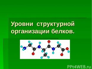 Уровни структурной организации белков.