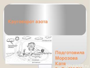 Подготовила Морозова Катя 9 «Б» МАОУ СОШ г.Светлогорска 2014 год Круговорот азот