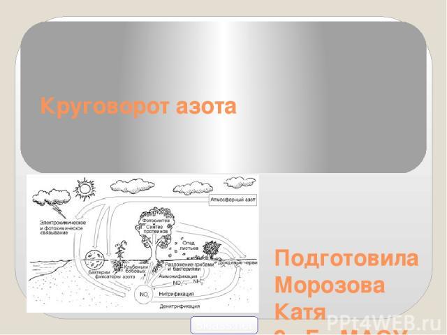 Подготовила Морозова Катя 9 «Б» МАОУ СОШ г.Светлогорска 2014 год Круговорот азота 5klass.net