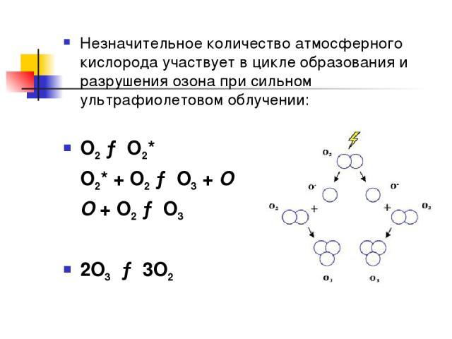 Незначительное количество атмосферного кислорода участвует в цикле образования и разрушения озона при сильном ультрафиолетовом облучении: O2 → O2* O2* + O2 → O3 + O O + O2 → O3 2O3 → 3O2