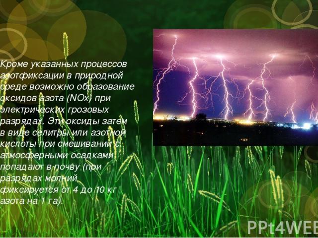 Кроме указанных процессов азотфиксации в природной среде возможно образование оксидов азота (NOx) при электрических грозовых разрядах. Эти оксиды затем в виде селитры или азотной кислоты при смешивании с атмосферными осадками попадают в почву (при р…