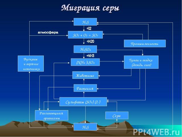 Миграция серы H2S SО2 + O2 = SО3 H2SO4 Животные Растения Сульфаты (SO4) (2-) (NH4 )2SO4 H2S Вулканы и горячие источники Разлагающиеся организмы Промышленность Туман и осадки (дождь, снег) Сера