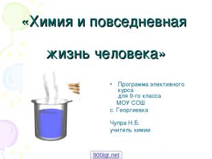 «Химия и повседневная жизнь человека» Программа элективного курса для 9-го класс