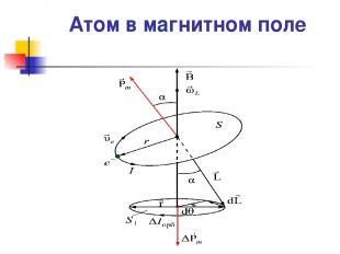 Атом в магнитном поле