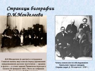 Члены комиссии по обследованию Уральских горных заводов. Справа сидит Д. Менделе