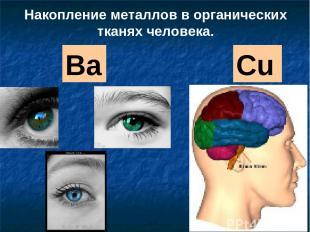 Ba Cu Накопление металлов в органических тканях человека.
