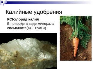 Калийные удобрения КСI-хлорид калия В природе в виде минерала сильвинита(КCI +Na