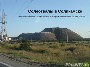 Солеотвалы в Соликамске это отходы от соледобычи, которые занимают более 438 га