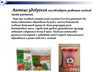 Азот это основной питательный элемент для всех растений: без азота невозможно об