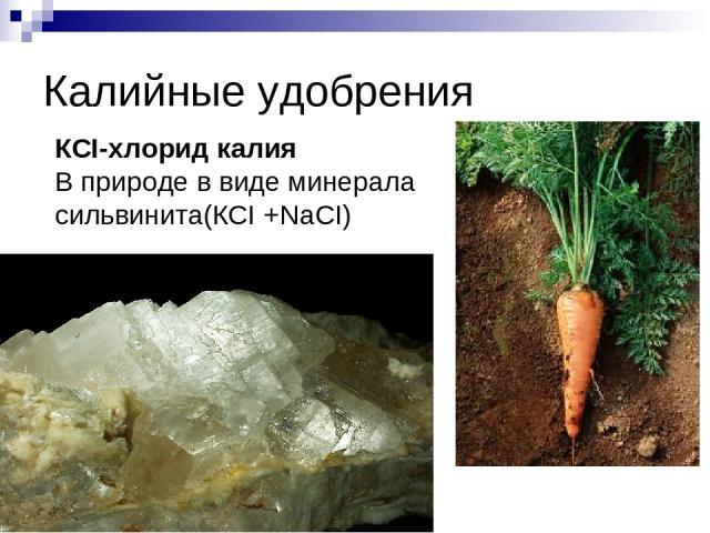 Калийные удобрения КСI-хлорид калия В природе в виде минерала сильвинита(КCI +NaCI)