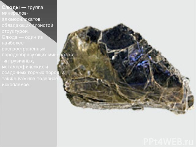 Слюды— группа минералов-алюмосиликатов, обладающих слоистой структурой. Слюда— один из наиболее распространённых породообразующих минералов интрузивных, метаморфических и осадочных горных пород, а также важное полезное ископаемое.