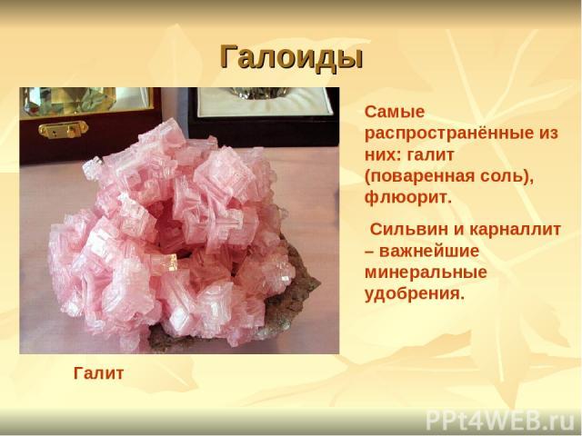 Галоиды Галит Самые распространённые из них: галит (поваренная соль), флюорит. Сильвин и карналлит – важнейшие минеральные удобрения.