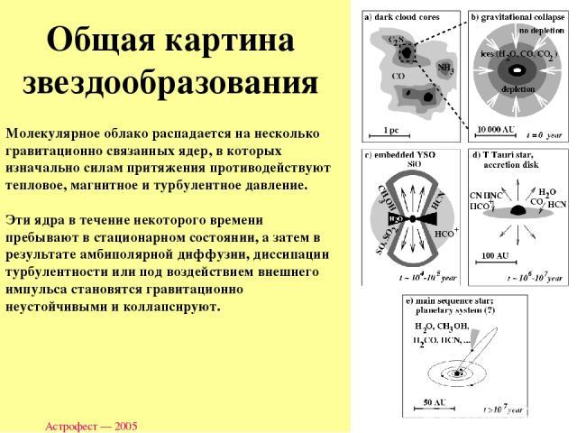 Астрофест — 2005 Молекулярное облако распадается на несколько гравитационно связанных ядер, в которых изначально силам притяжения противодействуют тепловое, магнитное и турбулентное давление. Эти ядра в течение некоторого времени пребывают в стацион…