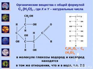 Органические вещества с общей формулой CX (H2O)Y , где X и Y – натуральные числа