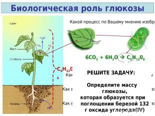 Биологическая роль глюкозы Какой процесс по Вашему мнению изображен? 6СО2 + 6Н2О