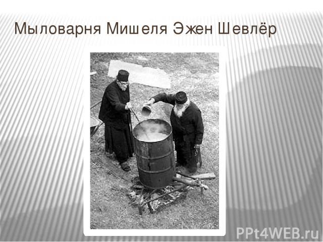 Мыловарня Мишеля Эжен Шевлёр
