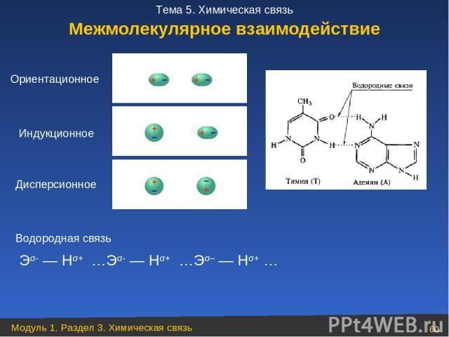 Ориентационное Индукционное Дисперсионное Водородная связь Межмолекулярное взаимодействие Эσ- — Нσ+ …Эσ- — Нσ+ …Эσ– — Нσ+ … Модуль 1. Раздел 3. Химическая связь * Тема 5. Химическая связь