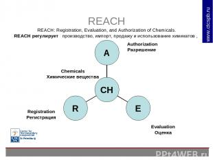 REACH REACH: Registration, Evaluation, and Authorization of Chemicals. REACH рег