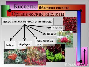 Кислоты Органические кислоты Яблочная кислота ЯБЛОЧНАЯ КИСЛОТА В ПРИРОДЕ Барбари