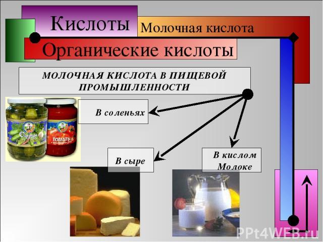 Кислоты Органические кислоты Молочная кислота МОЛОЧНАЯ КИСЛОТА В ПИЩЕВОЙ ПРОМЫШЛЕННОСТИ В соленьях В сыре В кислом Молоке
