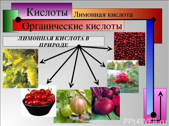 Кислоты Органические кислоты Лимонная кислота ЛИМОННАЯ КИСЛОТА В ПРИРОДЕ