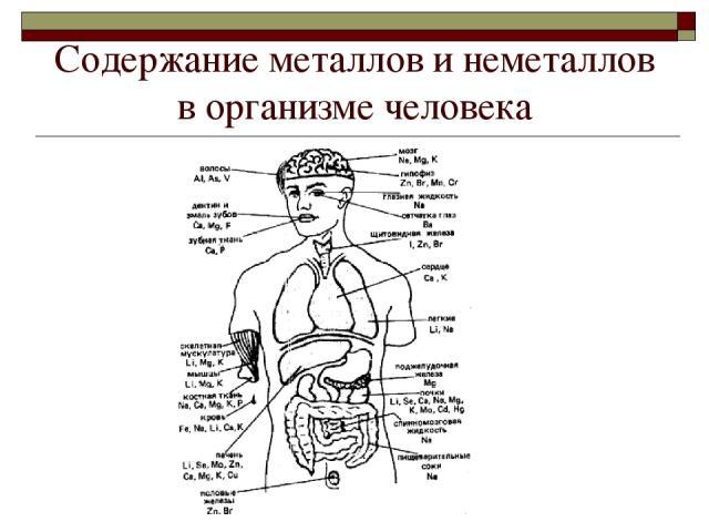 Cодержание металлов и неметаллов в организме человека