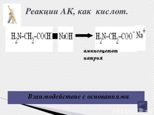 Схема образования пептидов H2N CH R C OH O H 2 + H