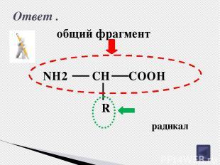 Изомерия углеродного скелета аминокислот. 4 3 2 1 CH3 CH2 CH2 COOH NH2 CH3 3 2 1
