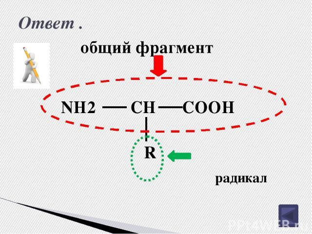 Изомерия углеродного скелета аминокислот. 4 3 2 1 CH3 CH2 CH2 COOH NH2 CH3 3 2 1 CH2 CH2 COOH NH2 2-аминобутановая кислота 2-амино-2-метилпропановая кислота