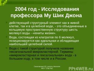 2004 год - Исследования профессора Му Шик Джона действующий структурный элемент
