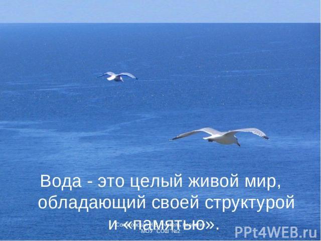 Вода - это целый живой мир, обладающий своей структурой и «памятью». Соколовская Н.В. учитель биологии МОУ