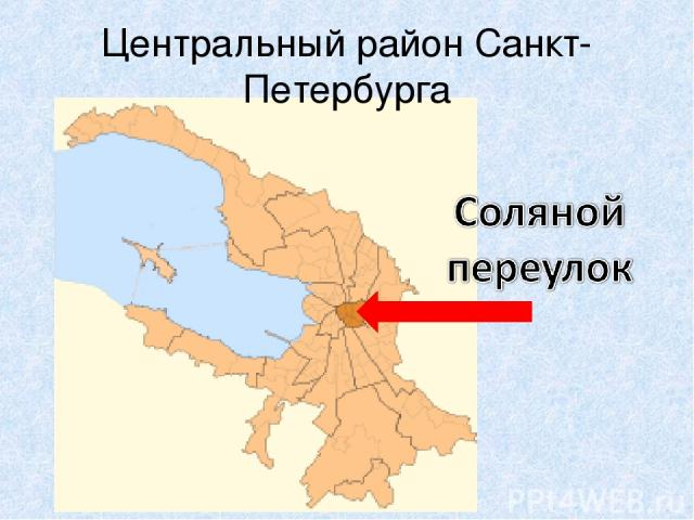 Центральный район Санкт-Петербурга