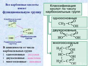 Все карбоновые кислоты имеют функциональную группу В зависимости от числа карбок