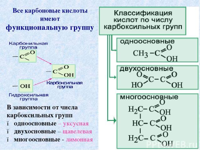 Все карбоновые кислоты имеют функциональную группу В зависимости от числа карбоксильных групп ● одноосновные – уксусная ● двухосновные – щавелевая ● многоосновные - лимонная