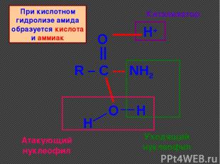 R – C --- NH2 O || O H+ H H Катализатор Уходящий нуклеофил Атакующий нуклеофил П