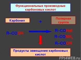 Функциональные производные карбоновых кислот Карбонил + Полярная группа Продукты