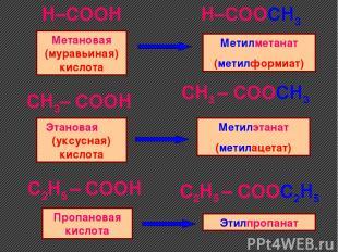 H–COOH H–COOCH3 CH3– COOH C2H5 – COOH CH3 – COOCH3 C2H5 – COOC2H5 Метановая
