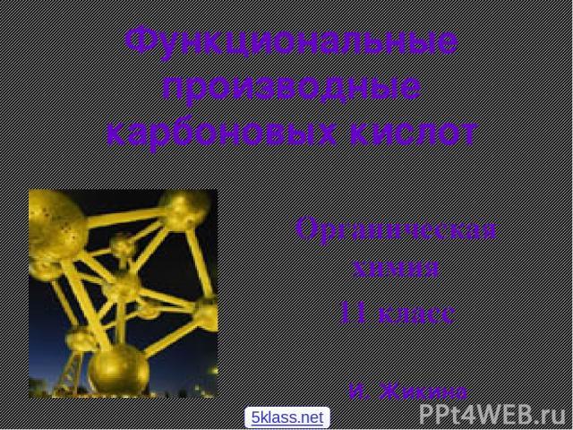 Функциональные производные карбоновых кислот Органическая химия 11 класс И. Жикина 5klass.net