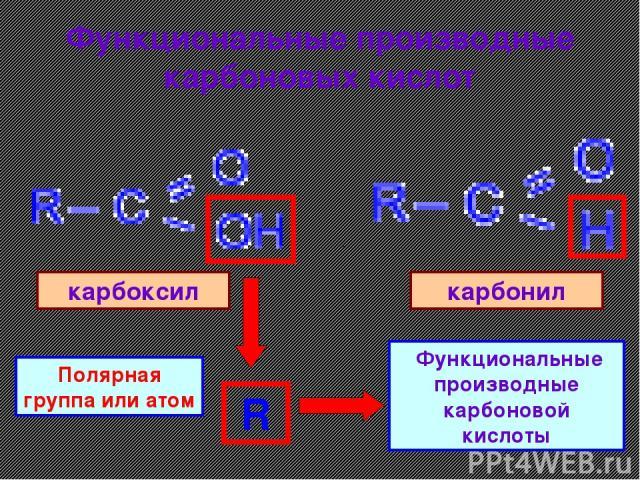 Функциональные производные карбоновых кислот . карбоксил карбонил R Полярная группа или атом Функциональные производные карбоновой кислоты