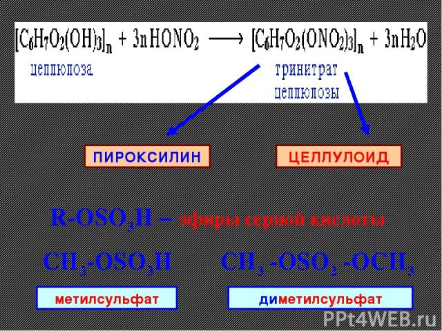 ЦЕЛЛУЛОИД ПИРОКСИЛИН R-ОSO3H – эфиры серной кислоты CH3-ОSO3H CH3 -ОSO2 -OCH3 метилсульфат диметилсульфат