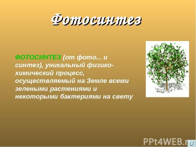 Фотосинтез ФОТОСИНТЕЗ (от фото... и синтез), уникальный физико-химический процесс, осуществляемый на Земле всеми зелеными растениями и некоторыми бактериями на свету