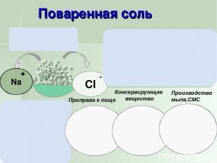 Приправа к пище Консервирующее вещество Производство мыла,СМС Соленая на вкус. Х