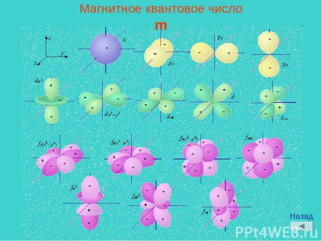 Магнитное квантовое число m Назад