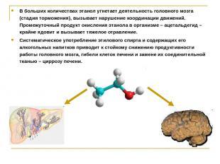 В больших количествах этанол угнетает деятельность головного мозга (стадия тормо