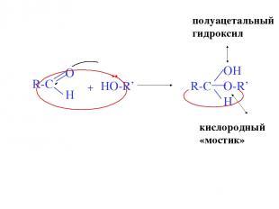 + HO-R' R-C OH H O- .. полуацетальный гидроксил R' кислородный «мостик»