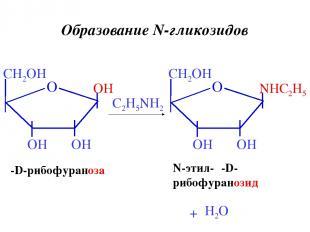 β-D-рибофураноза C2H5NH2 N-этил-β-D- рибофуранозид + H2O Образование N-гликозидо
