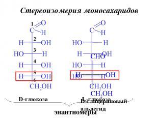 Стереоизомерия моносахаридов 6 5 4 3 2 1 D-глицериновый альдегид D-глюкоза L-глю