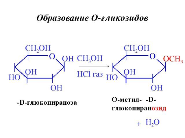 Образование O-гликозидов β-D-глюкопираноза CH3OH HCl газ + O-метил-β-D- глюкопиранозид H2O