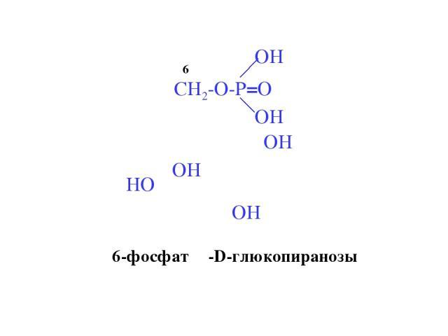 6 6-фосфат β-D-глюкопиранозы